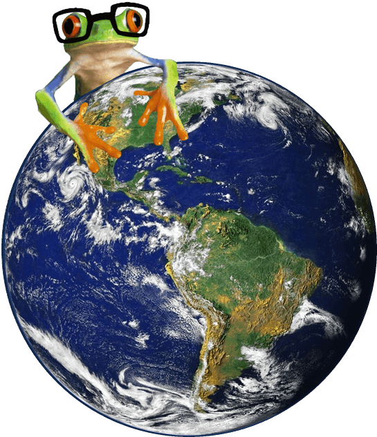 Image of Simplify Simple Frog on Earth
